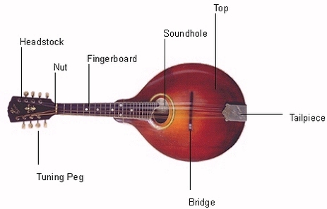 genie garage door parts diagram sitar parts diagram essay - recycled strings